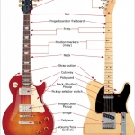 Guitar 101: Anatomy – The Basics