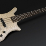 Warwick Quartet – Warwick's Basses Of The Month