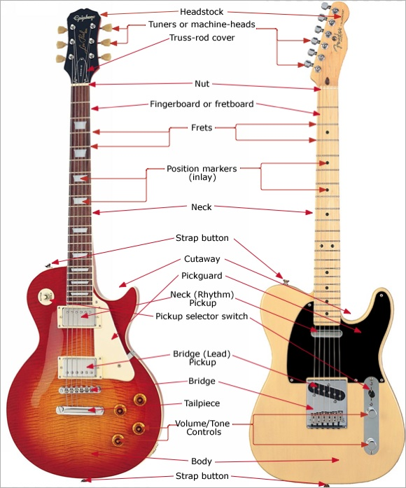 Guitar Anatomy - The Parts Of Electric And Acoustic Guitars | Guitarless